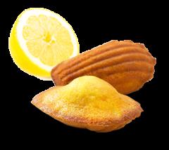 décoration madeleine citron