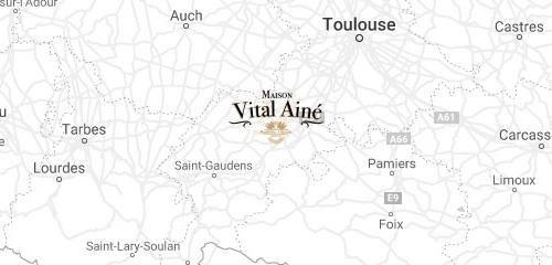 Adresse Vital Ainé Martes-Tolosane